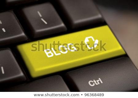Blog belépés kulcs gomb fehér billentyűzet Stock fotó © REDPIXEL