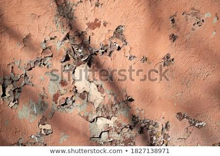 Różowy ściany malowany uszkodzenie starych historyczny Zdjęcia stock © meinzahn
