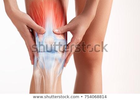 人間 筋 けが 医療 青 ストックフォト © Lightsource