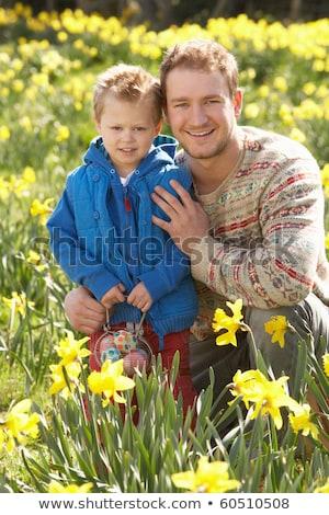 Baba oğul easter egg hunt nergis alan çift erkek Stok fotoğraf © monkey_business
