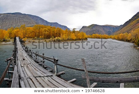 old suspension bridge through katun stock photo © aikon