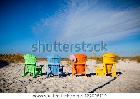 roze · stoelen · twee · groen · gras · hout · home - stockfoto © kimmit