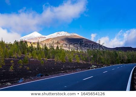 drogowego · wyspa · krajobraz · górskich · niebieski - zdjęcia stock © amok