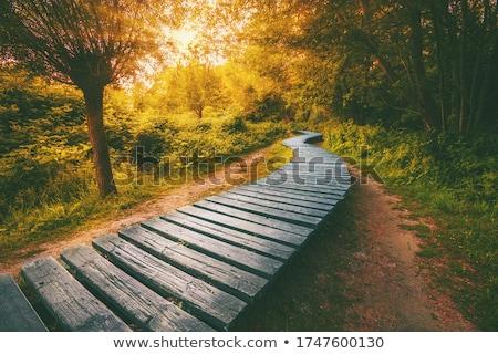 görmek · ahşap · köprü · dağ · nehir · sonbahar - stok fotoğraf © jarin13
