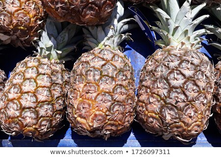 friss · szelet · ananász · fából · készült · gyümölcs · zöld - stock fotó © mcherevan