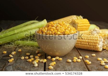 boiled ears of corn stock photo © zoryanchik