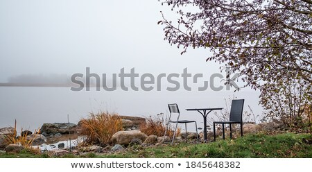 foggy fall day over calm lake Stock photo © PixelsAway