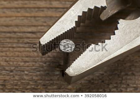 steel pliers Stock photo © GeniusKp