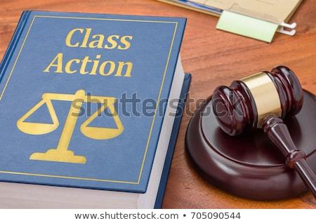 ação · judicial · vermelho · branco · juiz · botão - foto stock © lightsource