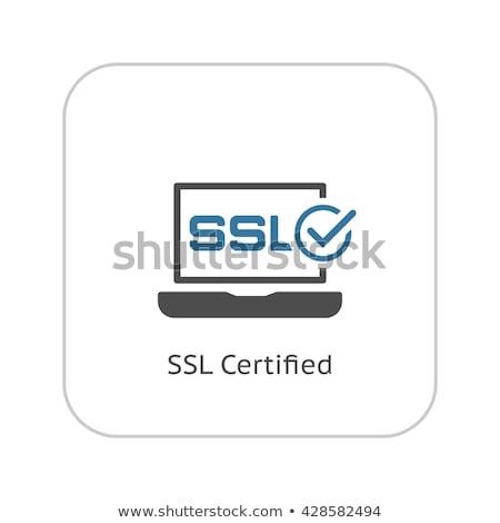 ssl · アイコン · デザイン · 孤立した · 実例 · インターネット - ストックフォト © wad