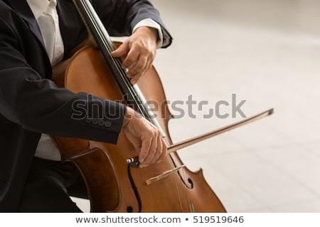 男 チェロ 実例 楽しい 面白い バンド ストックフォト © adrenalina