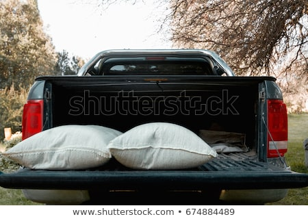 Pick up truck loaded with bags Stock photo © bluering
