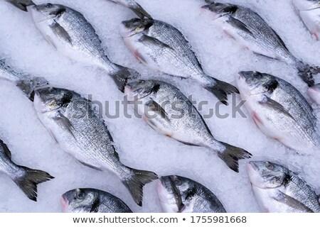 Dorado fish for sale at the market Stock photo © ptichka