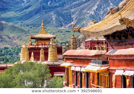 Ancient lamasery in Tibet Stock photo © bbbar