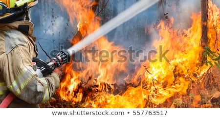 Firefighter With Fire Hose Stock photo © derocz