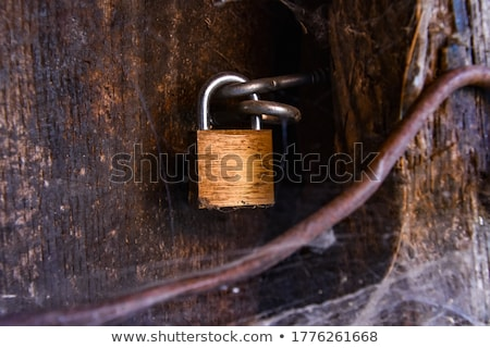 Closeup shot of padlock on the old wooden gates Stock photo © Nobilior