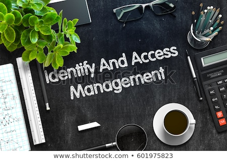 Identify And Access Management Concept on Chalkboard. 3D Stock photo © tashatuvango