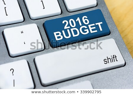 Blue Budget 2016 Button on Keyboard. Stock photo © tashatuvango