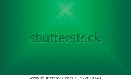 Wide screen webpage or business presentation abstract greenery b Stock photo © almagami