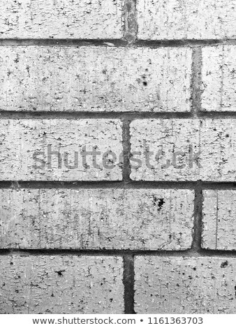 Old grunge brick wall with space for text. Vertical orientation. Stock photo © pashabo