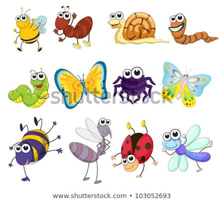 Snail Cartoon Character Stock photo © Krisdog