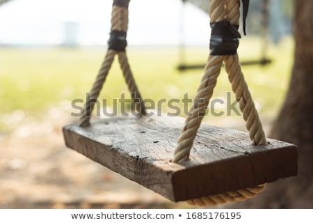 Young girl on swing Stock photo © IS2