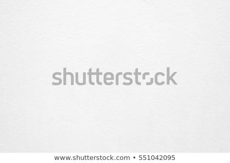 Yıpranmış beyaz duvar doku kuru Stok fotoğraf © mpessaris