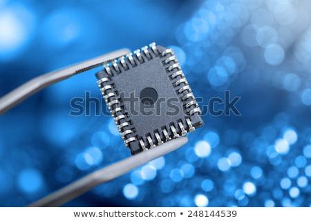 electronic chip and tweezers  Stock photo © OleksandrO
