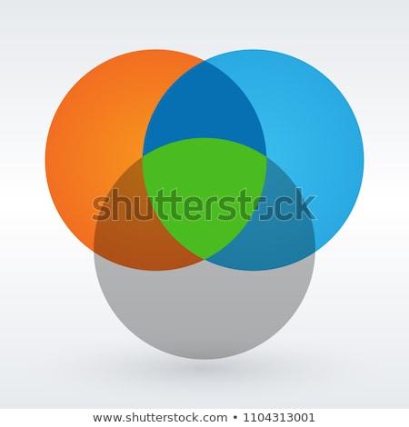 Venn diagram flat style color infographics template. vector illustration. Stock photo © kyryloff