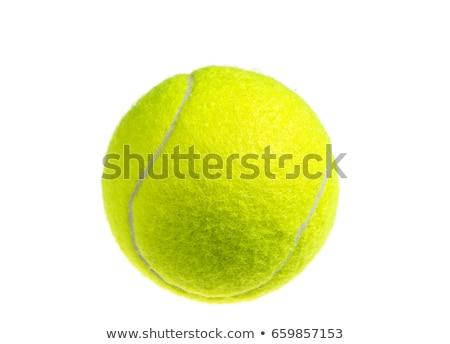 citromsárga · teniszlabda · net · bíróság · kint · nap - stock fotó © grafvision