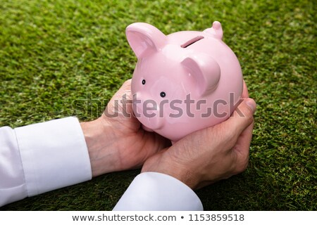 Elevated View Of A Person Holding Pink Piggybank Stock photo © AndreyPopov
