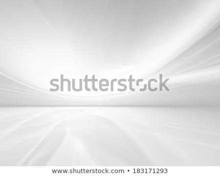 Soyut gri beyaz eğri hatları gri Stok fotoğraf © ESSL
