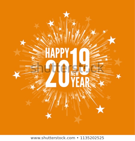 beautiful 2019 new year poster design with light effect Stock photo © SArts