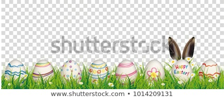 Natural Easter Egg Hare Ears Transparent Stock photo © limbi007