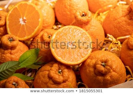 Japonês amarelo mandarim laranja ilustração comida Foto stock © Blue_daemon