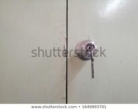Klasszikus öreg sérült ajtó viharvert fém Stock fotó © simazoran