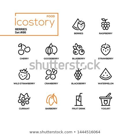 Icon Of Gooseberry Stock photo © angelp