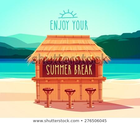 beach bar concept vector illustration stock photo © rastudio