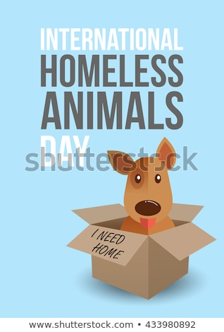 Uluslararası evsiz hayvanlar gün afiş 19 Stok fotoğraf © barsrsind