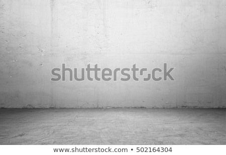 empty room with wooden floor and concrete wall Stock photo © sedatseven