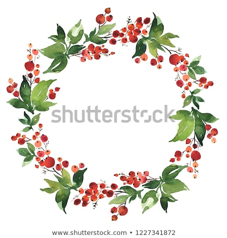 Holly Berry Wreath with Loose Berries Stock photo © marilyna