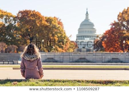 ストックフォト: Yellow Orange Autumn Fall Trees Washington Dc