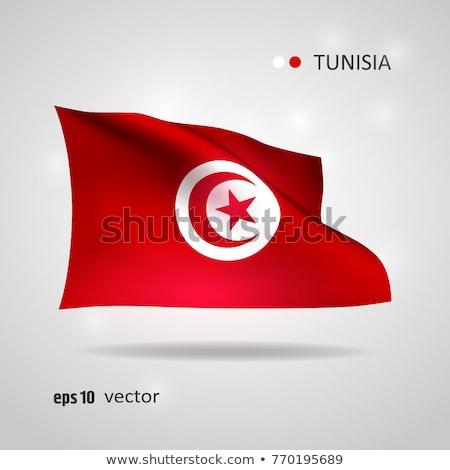 политический флаг Тунис Мир стране Сток-фото © perysty