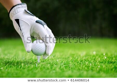 golf · zöld · lyuk · férfi · rövid · labda - stock fotó © hofmeester