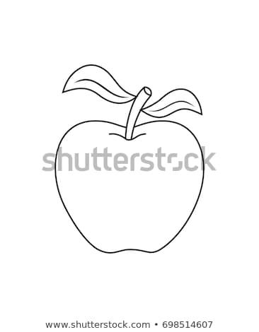 Colorido maçãs três isolado branco jardim Foto stock © Saphira