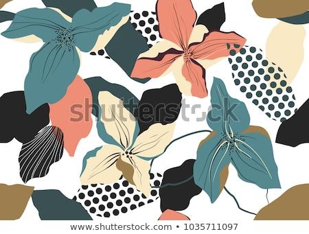Floral geometria padrão preto flor textura Foto stock © ankarb