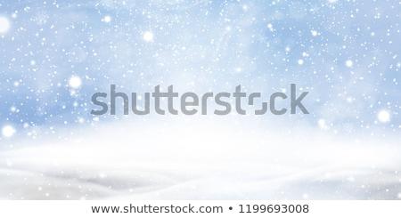 Stock fotó: Kék · hó · hópelyhek · gyönyörű · textúra · tél
