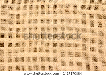 Hessian texture Stock photo © dutourdumonde