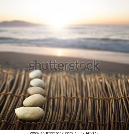 Sequence of stones on wooden base for spa Stock photo © deyangeorgiev