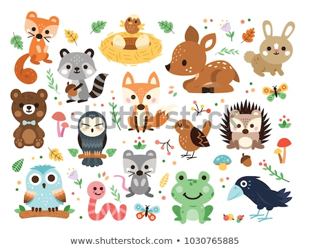 Aranyos állatok erdő mosoly boldog természet tájkép Stock fotó © balasoiu